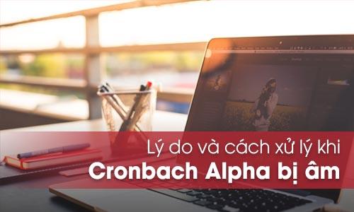 cronbach alpha am