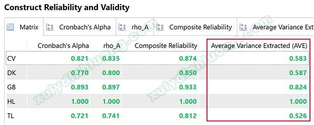 Đánh giá mô hình đo lường trên SMARTPLS